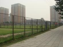 北京原人ラグビークラブ-100905_ground2